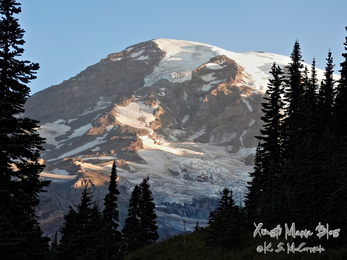 Glaciers on the south face of Mount Rainier lit by morning sunlight and framed by pine trees.