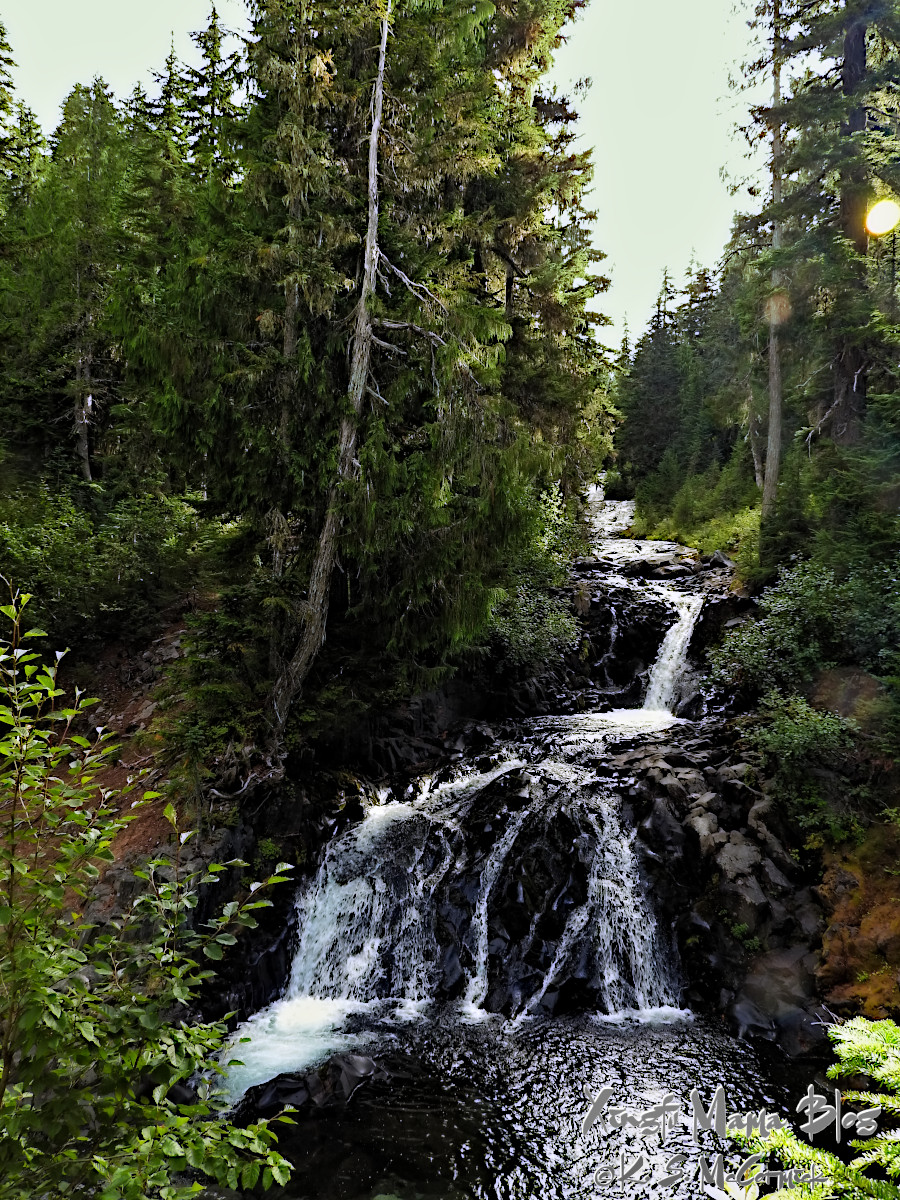 A series of small waterfalls along the Paradie River as it wanders through alipine forest.