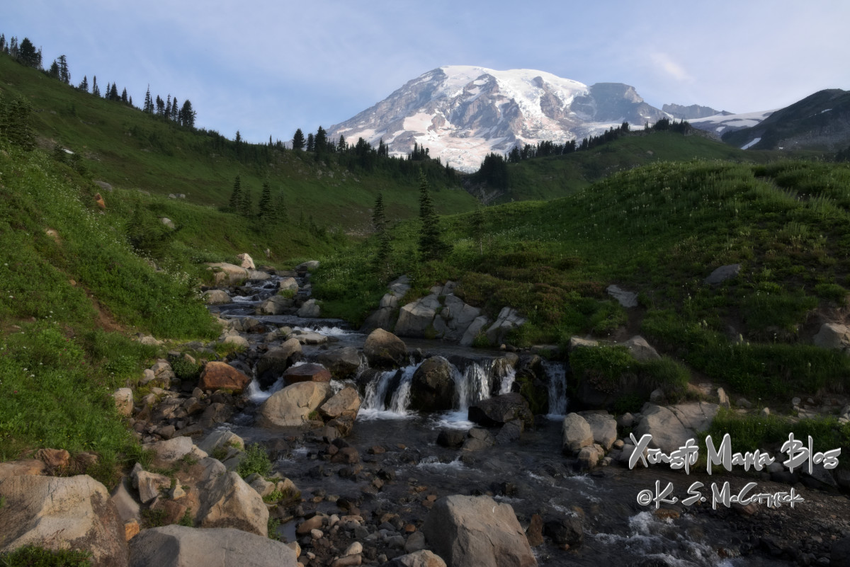 Creek flowing through alpine meadows at Mount Rainier.