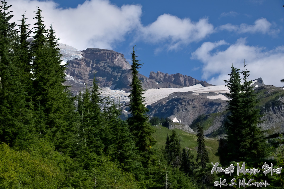 Alpine trees and the south-eastern flank of Mount Rainier.
