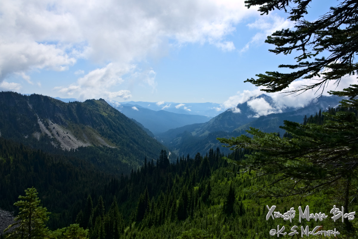 view of the Cascade mountains from along the Lakes Trail from Paradise.