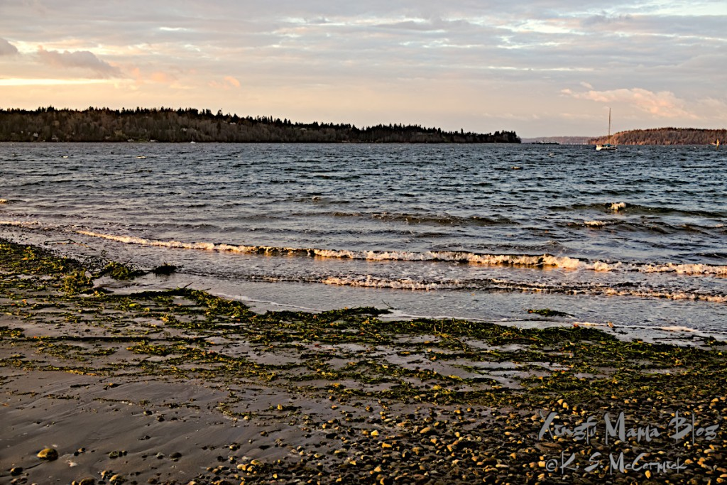 View of waves on the shores of Vashon Island in Puget Sound.
