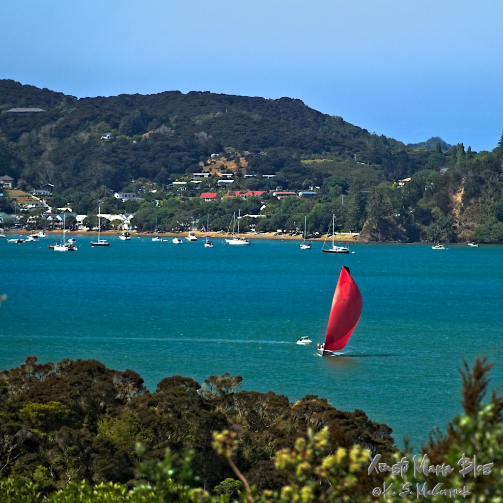 A sailboat with its bright red spinnaker up and full of wind. in the Bay of Islands near Paihia New Zealand.