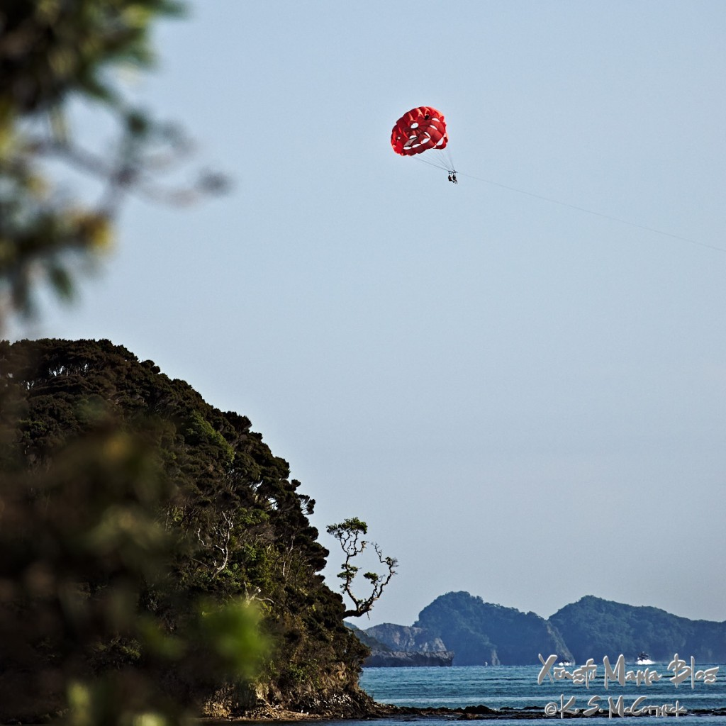 People paragliding on the Bay of Islands in New Zealand.