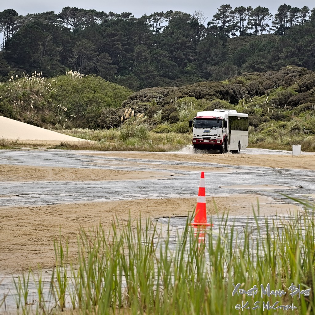 They use these special 4 wheel drive tour buses on the north island for groups visiting the dunes and driving along 90 mile beach.