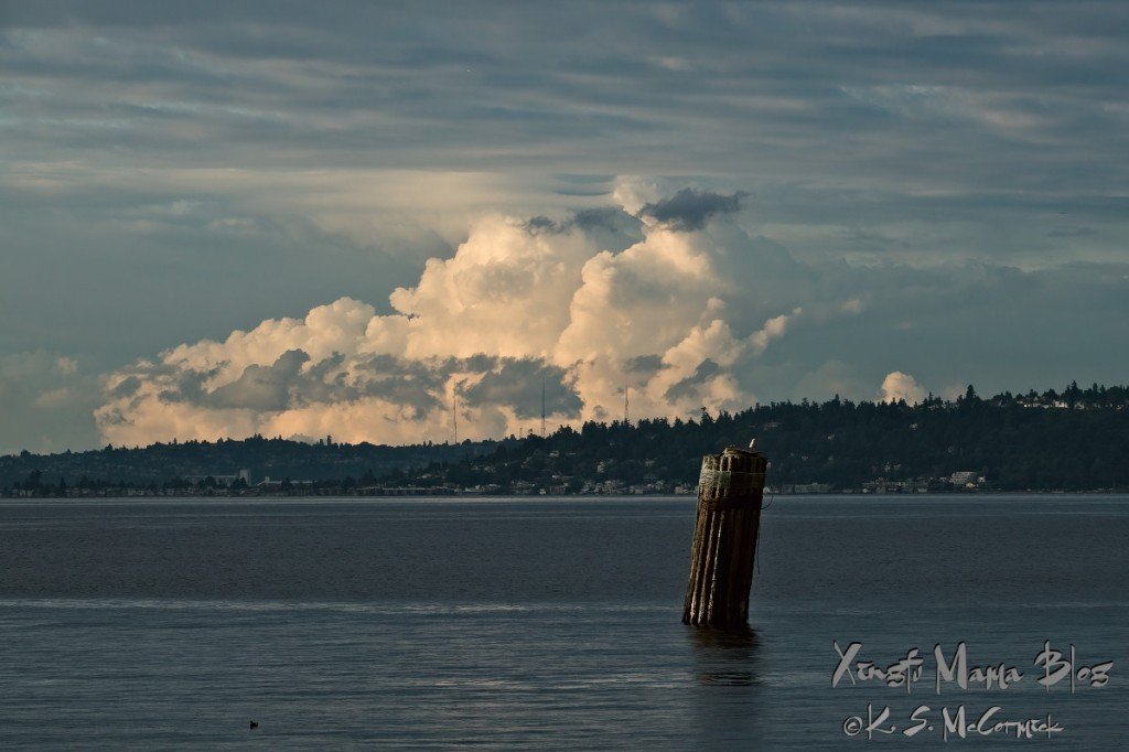 Storm clouds over Seattle lit by the westering sun.