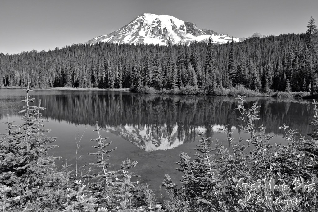 Reflection lakes at Mount Rainier.