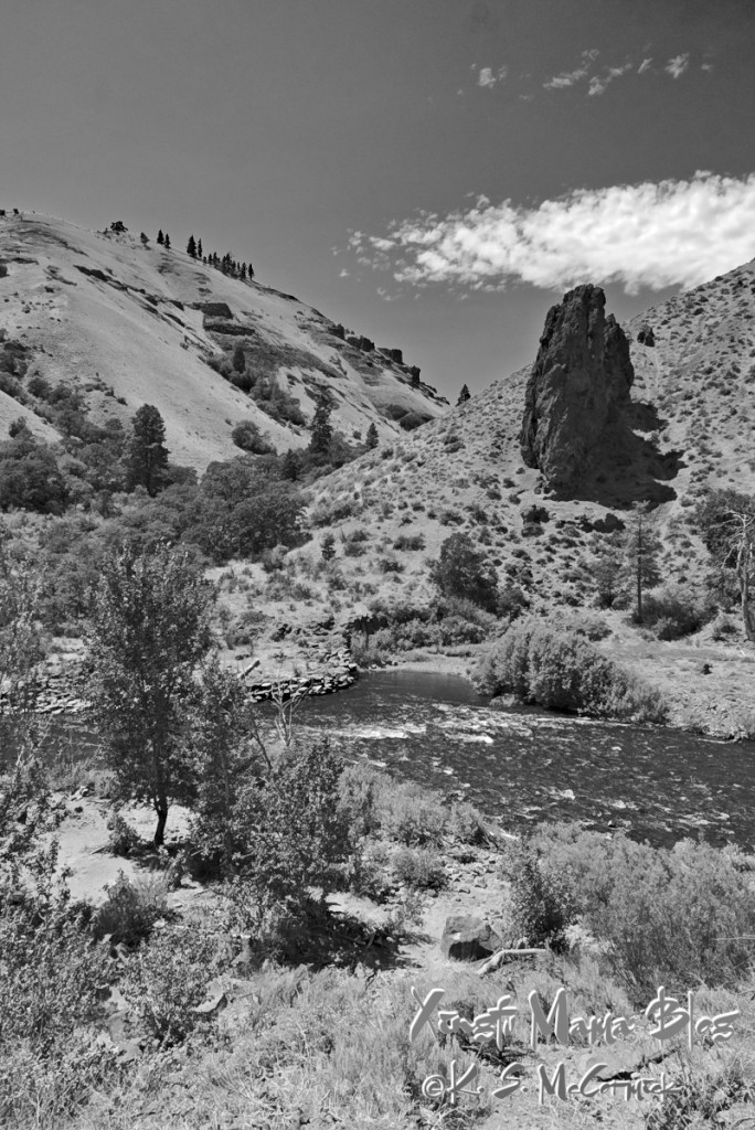 Naches River in Eastern Washington, Even though the river flows through the land is arid and there are few trees.